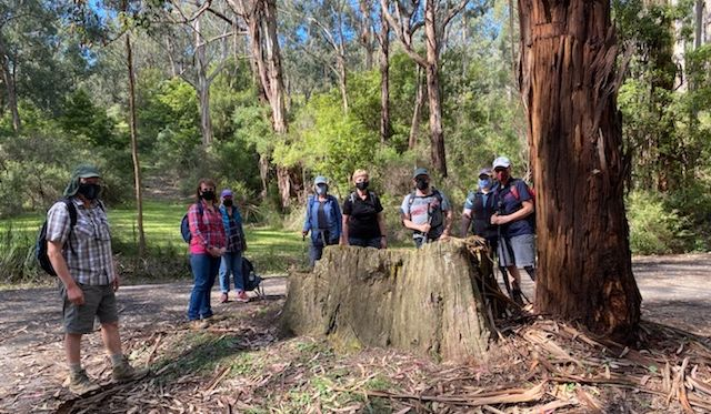 Strezelecki Club members About to start a walk at Morwell National Park